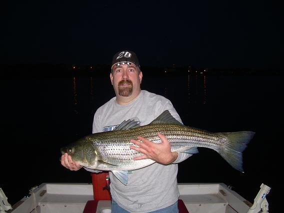 Click image for larger version  Name:Bay fishing 009.jpg Views:577 Size:68.2 KB ID:6180