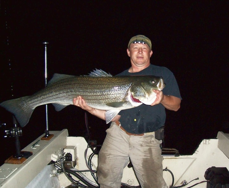 Click image for larger version  Name:Biggest_fish_best_pic.jpg Views:474 Size:90.2 KB ID:7340