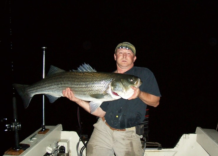 Click image for larger version  Name:Biggest_fish_of_the_night.jpg Views:197 Size:61.0 KB ID:7328