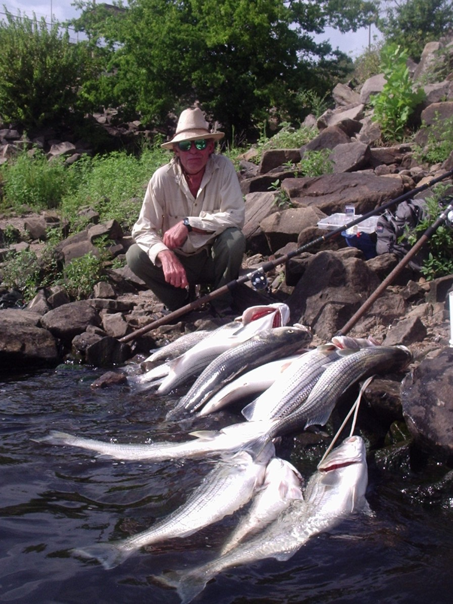 Click image for larger version  Name:Canadian_River_Stripers_May_2008.jpg Views:1903 Size:309.4 KB ID:6088