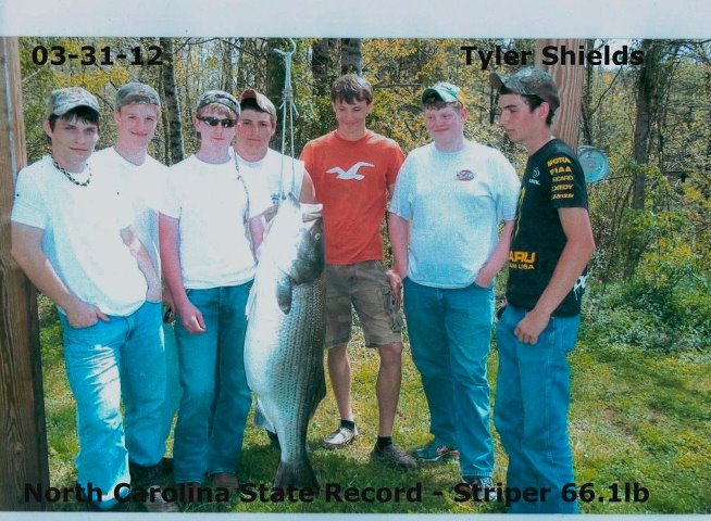 Click image for larger version  Name:fish.jpg Views:267 Size:90.4 KB ID:15812