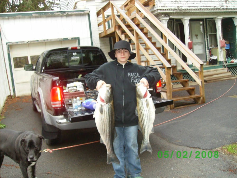 Click image for larger version  Name:fish_20003r.jpg Views:593 Size:158.0 KB ID:6151