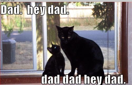 Click image for larger version  Name:hey-dad-r.jpg Views:78 Size:123.4 KB ID:13833