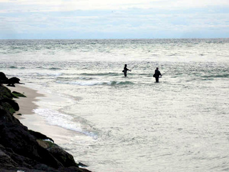 Click image for larger version  Name:moriches-inlet-jetty.jpg Views:1165 Size:63.9 KB ID:13588