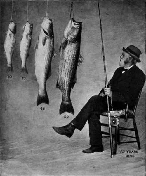 Click image for larger version  Name:MR-JAMES-R-STEERS-AND-STRIPED-BASS.jpg Views:159 Size:25.2 KB ID:12630