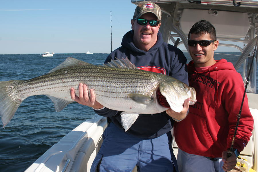 Click image for larger version  Name:Striper 2013-2.jpg Views:127 Size:86.3 KB ID:17905