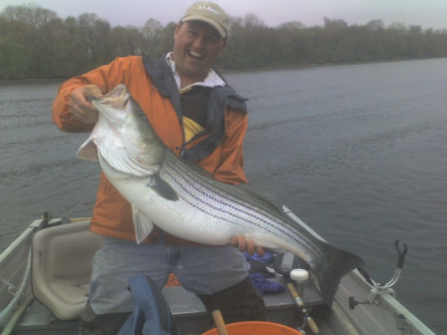 Click image for larger version  Name:striper 4-20-08.jpg Views:363 Size:56.3 KB ID:6438