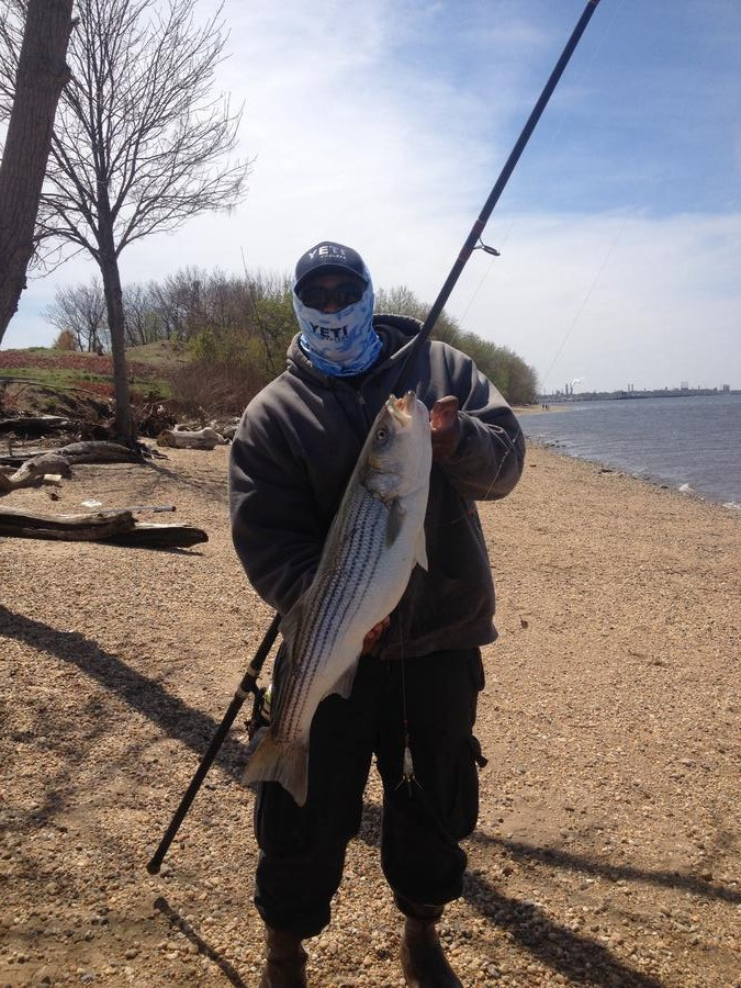 Click image for larger version  Name:striper fix.jpg Views:127 Size:230.9 KB ID:18929