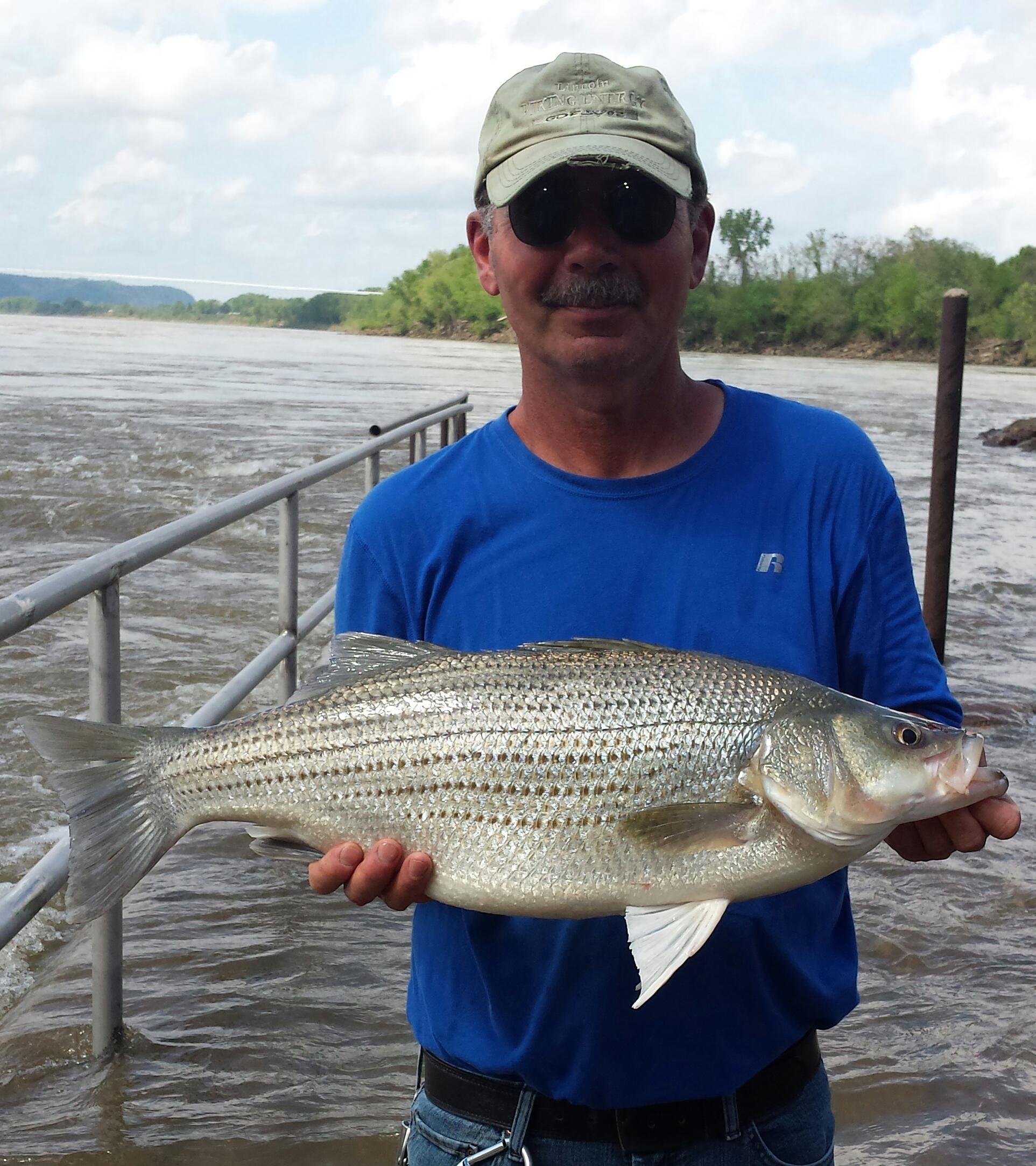 10.5 lbs caught 5-1-16