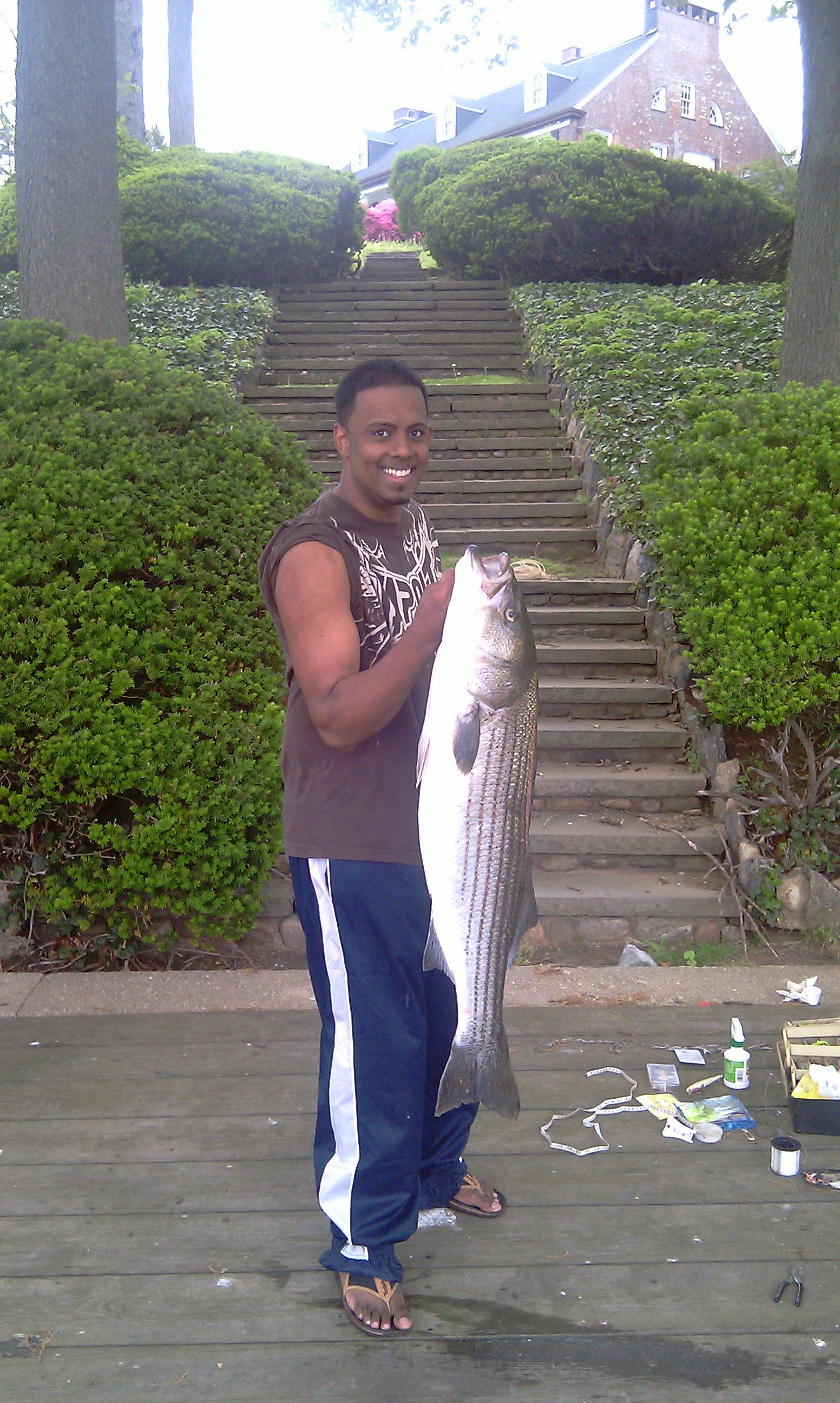 27lb 43 inches