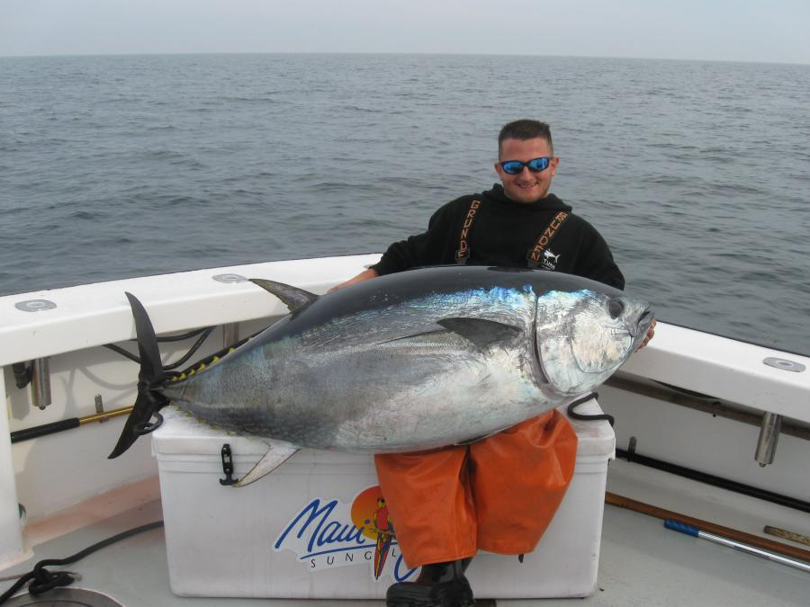 November Fat Tuna