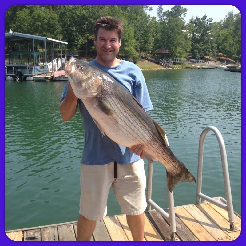 Smith Lake Striper Fishing 24-7 Guide Service