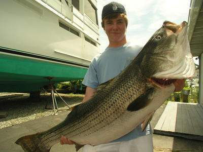 World Striped Bass Jr. angler record